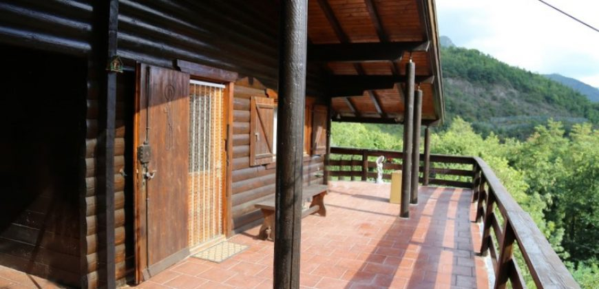 For sale a chalet with two apartments in Agaggio