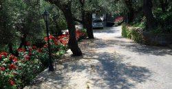 Vendesi splendida villa bifamiliare con piscina e giardino