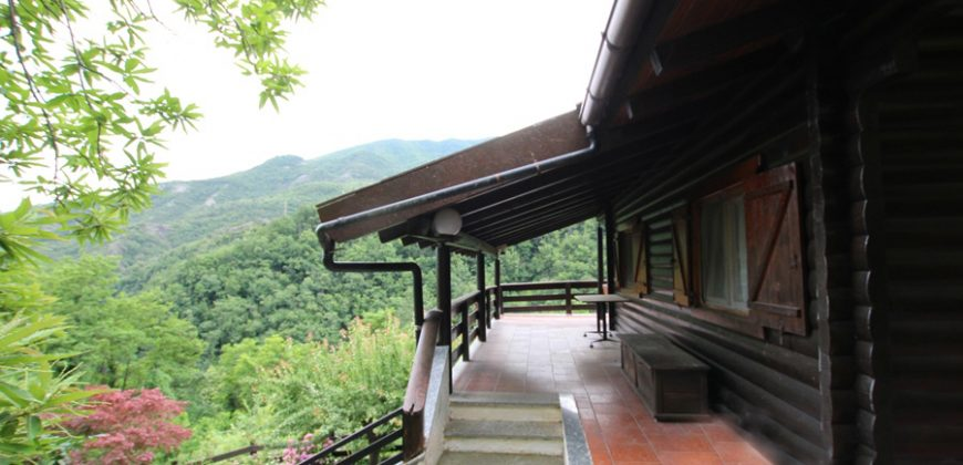 Two family chalet with land