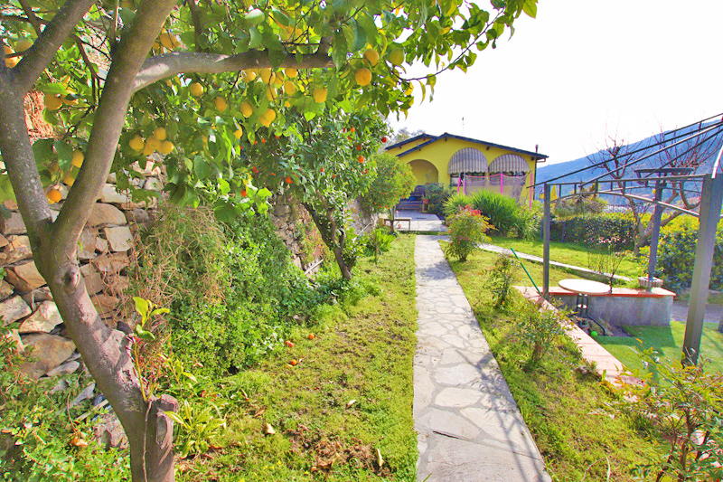 For sale a lovely apartment with garden and garage
