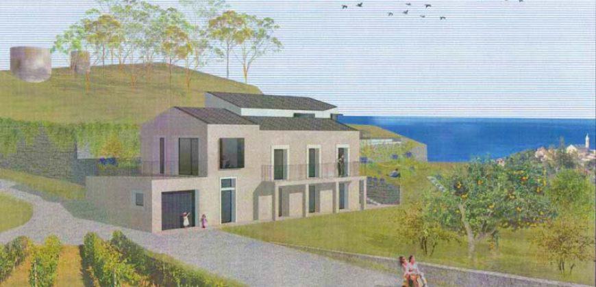 Här kommer huset för dig som drömmer om vinodling med havsutsikt!